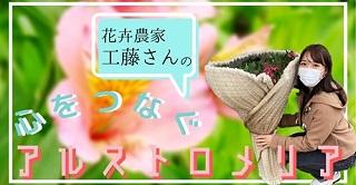kudo_banner2.jpg