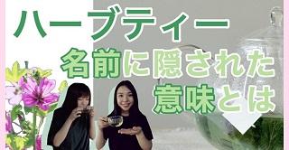 lehti_banner.jpg