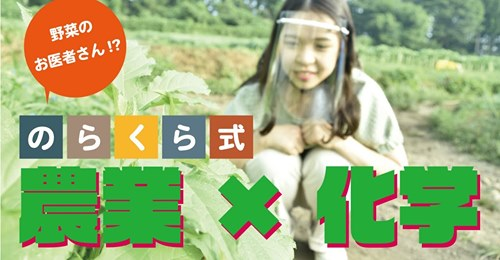 norakura_banner1.jpg