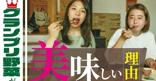 norakura_banner2.jpg