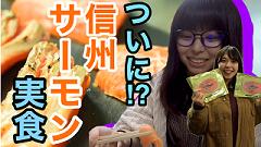 yachihocyogyou_banner2.png