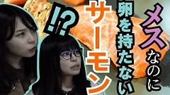 yachihogyogyou_banner1.jpg